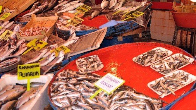 Av Yasağının Başlaması Balık Fiyatlarını Düşürdü