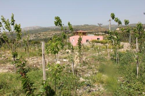 İpek böcekçiliği projesinde koza evinin yapımım tamamlandı