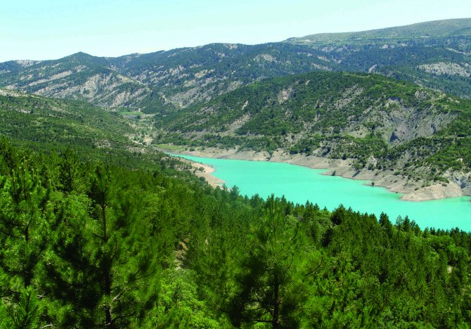 Baraj ve göletlerin çevresi yeşillendiriliyor