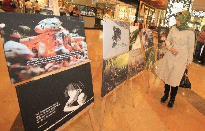 Piazza'da Fotoğraflarla İnsanlığa Birlik Mesajı Verildi