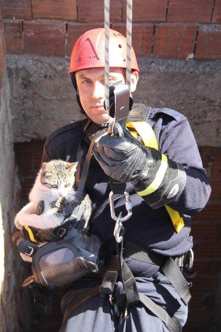 Asansör Boşluğunda Mahsur Kalan Kediyi İtfaiye Kurtardı