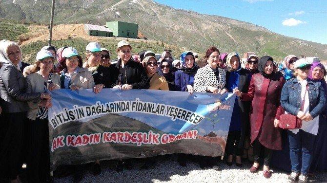 AK Parti Bartın Kadın Kolları Bitlis'te
