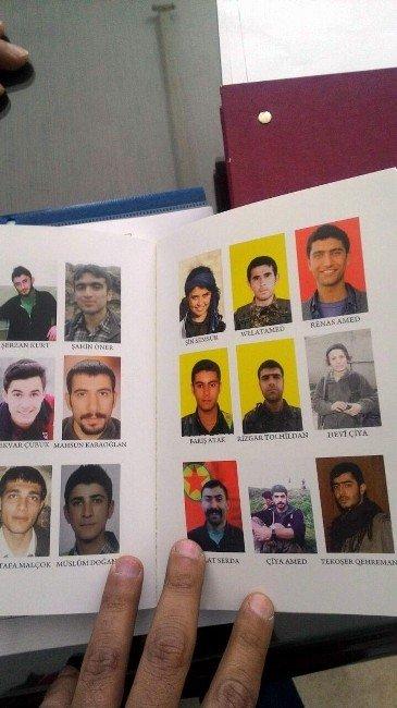 Aydın'da Arama Noktasında Terörist Yakalandı