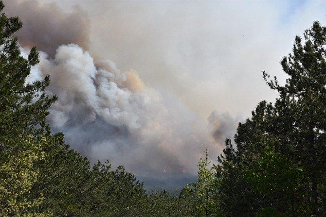 Dursunbey'deki Orman Yangını Sürüyor
