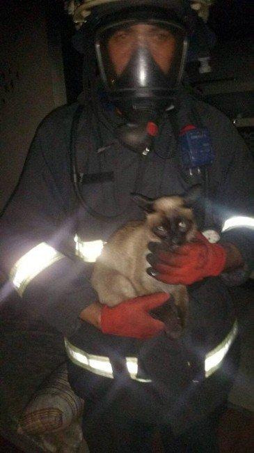İtfaiye Eri Kediyi Alevlerden Kurtardı