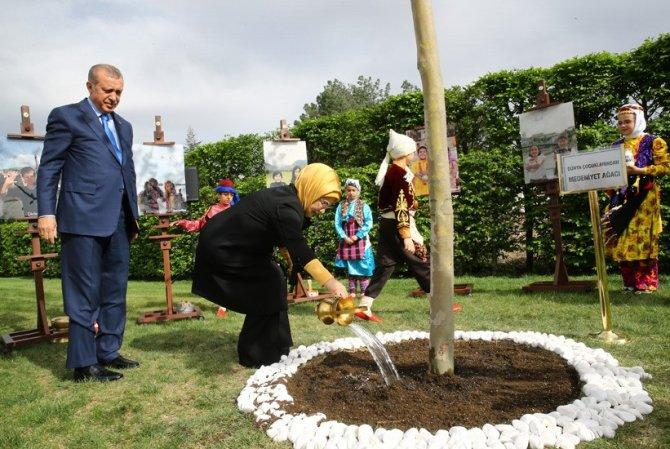 Cumhurbaşkanı Erdoğan, çınar ağacına çocuklarla birlikte can suyu verdi