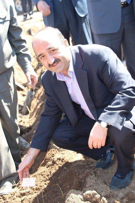 """""""Erzurum'un Yüzleri"""" Fidanlarla Yeniden 'Can'landı"""