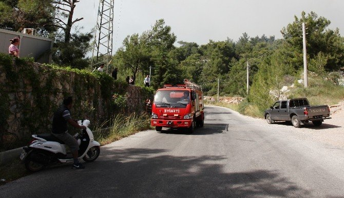 Bodrum'daki Orman Yangın Otellere Ulaşmadan Söndürüldü