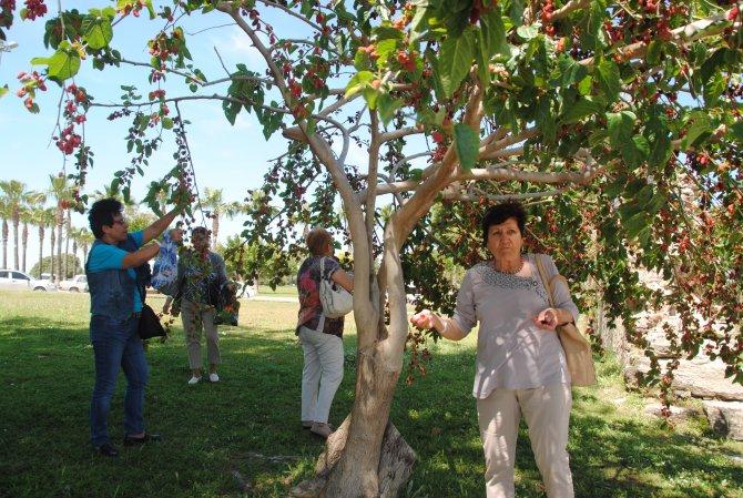 Romanya'da yaşayan Türkler Manavgat'ta eko turu yaptı