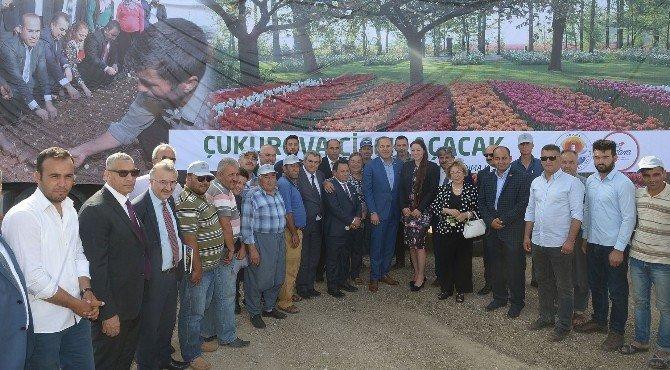 Adana'dan Hollanda'ya Çiçek İhracatı