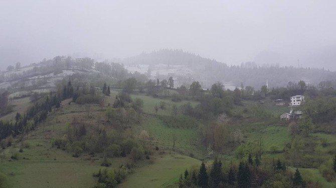 Giresun'da Nisan Karı