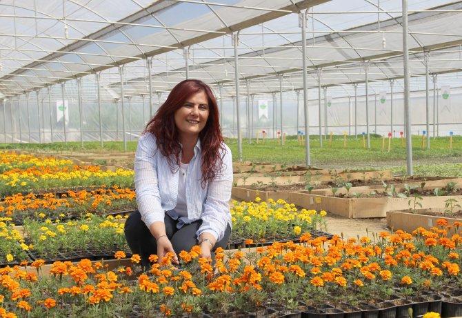 Yerel tohumlarla yerel ürünler yeniden canlanacak