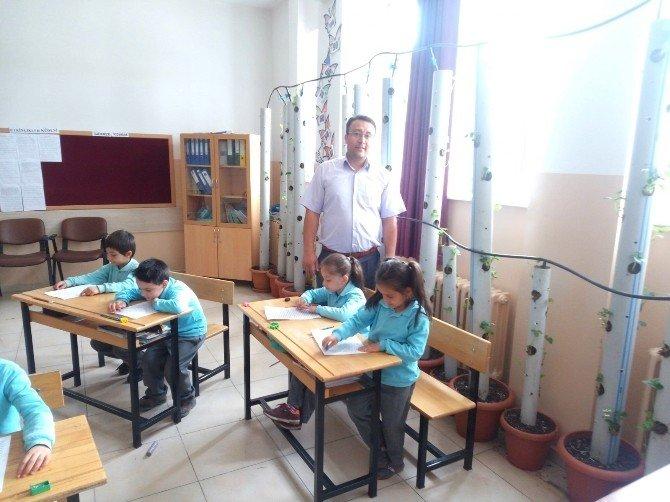 Dereköy Ortaokulu'nda 'Okul Benim Çileğimdir' Projesi