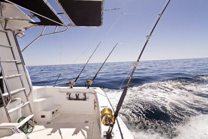 Deniz Tutkunlarını Buluşturan Site