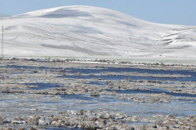 Kars'ta Nisan Karı Hayatı Olumsuz Etkiledi