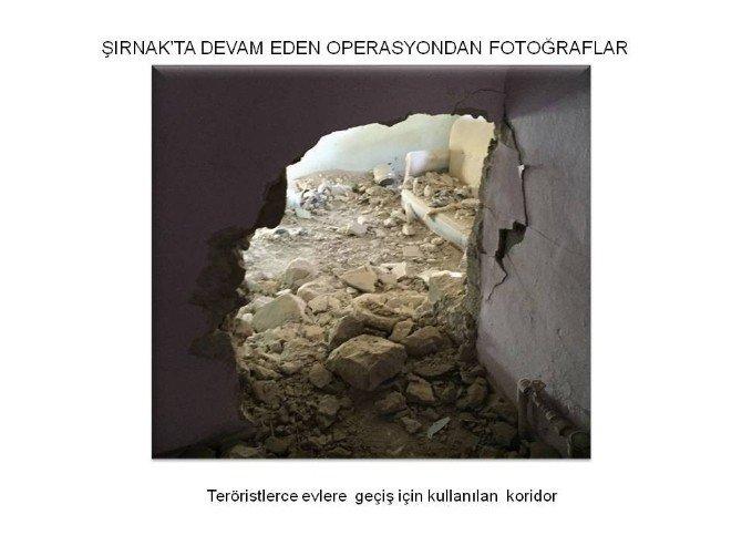 Şırnak'ta Operasyonlar Devam Ediyor