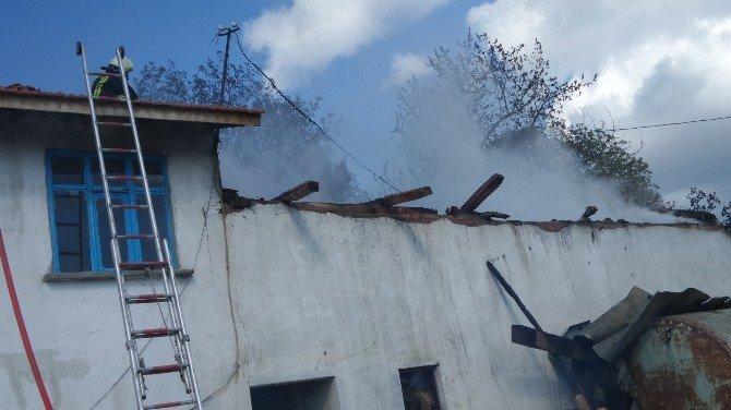 Tosya'da Besi Damı Ve Samanlık Tamamen Yandı