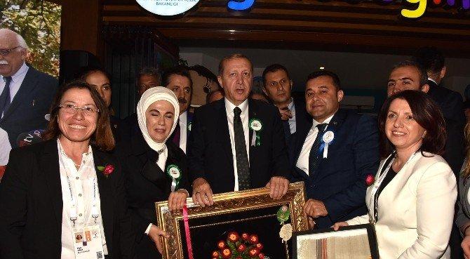 Başkan Yücel, Cumhurbaşkanı Erdoğan'a Alanya'ya Özgü İpek Kozası Tablosu Hediye Etti