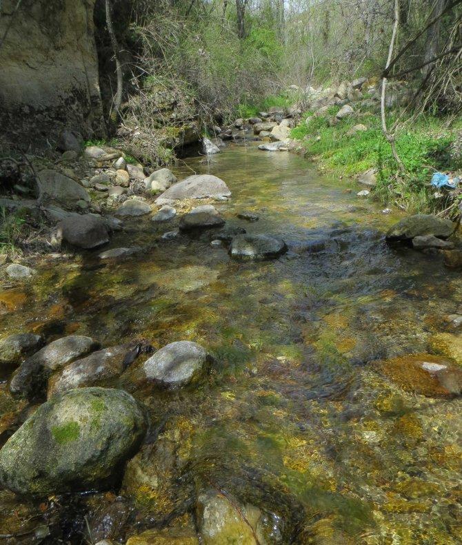 'Kelebekler Vadisi' Türkiye'nin 205. milli parkı oldu
