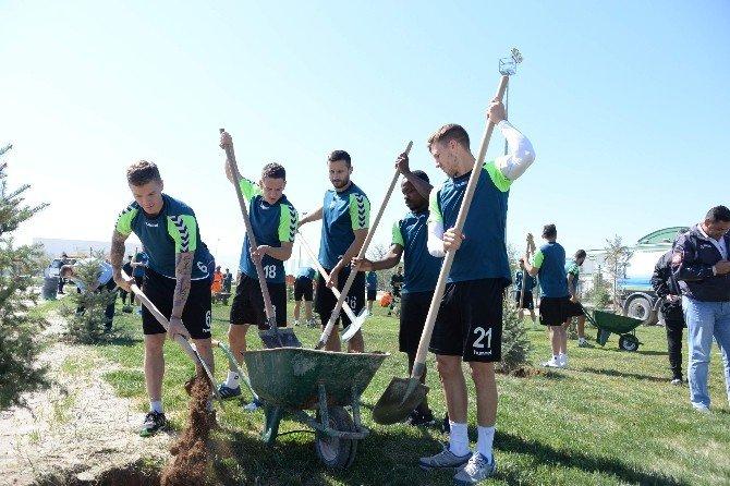 Torku Konyaspor'da Yönetim, Teknik Heyet Ve Futbolcular Fidan Dikti