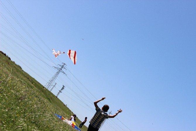 Cizre'de Uçurtma Şenliği Düzenlendi