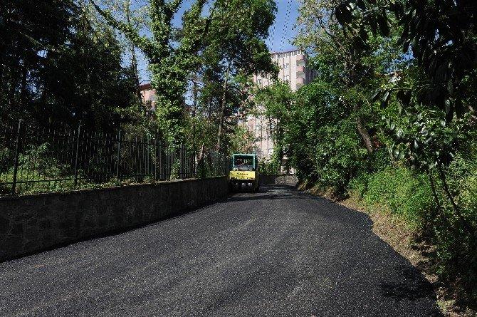 Trabzon Büyükşehir Belediyesi Asfaltlama Çalışmalarına Başladı