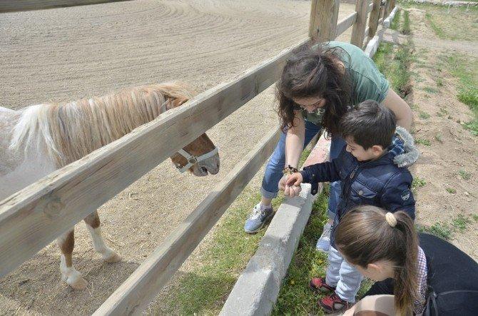 ESOGÜ Mahmudiye Atçılık Meslek Yüksekokulu'nda 23 Nisan Coşkusu