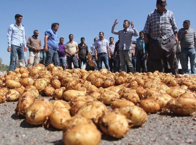 Üretici Patates Döküp Yol Kapattı