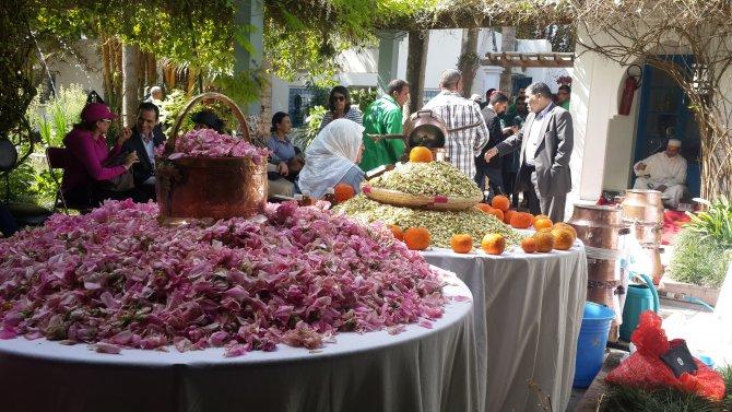 Fas'ta portakal çiçeği gösteride damıtıldı