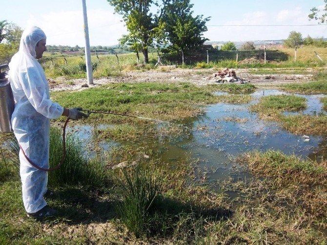 Tekirdağ'da Sivrisinekle Mücadele Çalışmaları