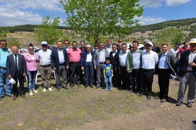 Şükrü Nazlı: Orman Ve Su İşleri Bakanlığı Kütahya'da 94 Milyon Fidanı Toprakla Buluşturdu