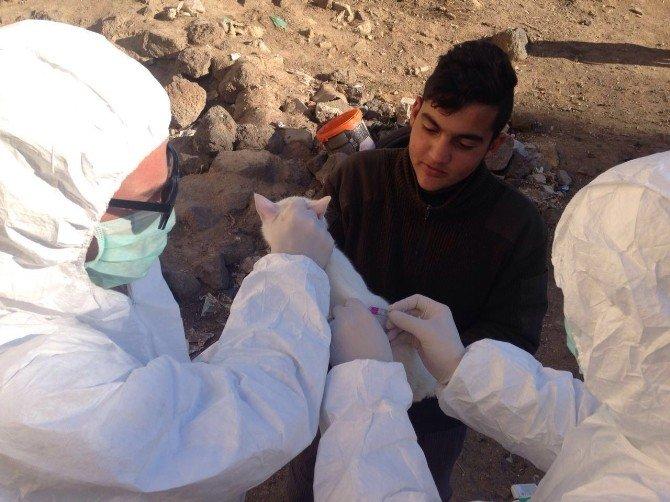 Patnos'ta Kuduz Vakaları İçin Önlemler Artırıldı