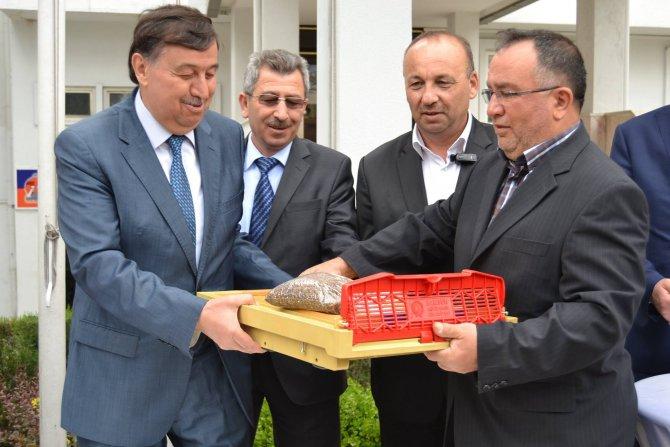 Üreticilere polen tutucu tuzak dağıtıldı