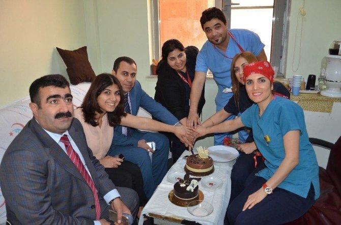 Cizre'de Ebeler Haftası Kutlaması