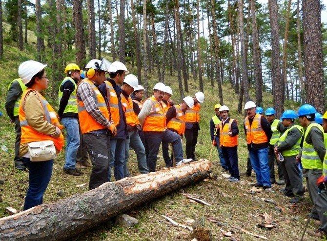 Akdağmadeni Orman İşletme Müdürlüğü'nde Standardizasyon Eğitimi
