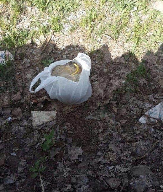 Çocukların Metruk Binada Bulduğu Paketten Bomba Çıktı