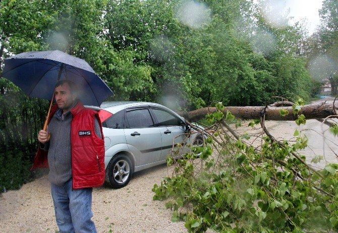 Bolu'da Yağmur Ve Fırtına Hayatı Felç Etti