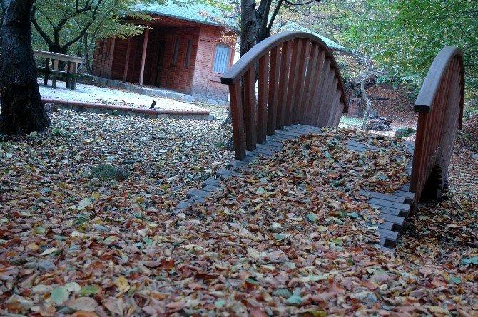 Delmece Tabiat Parkı Projesi Hayata Geçirilemedi
