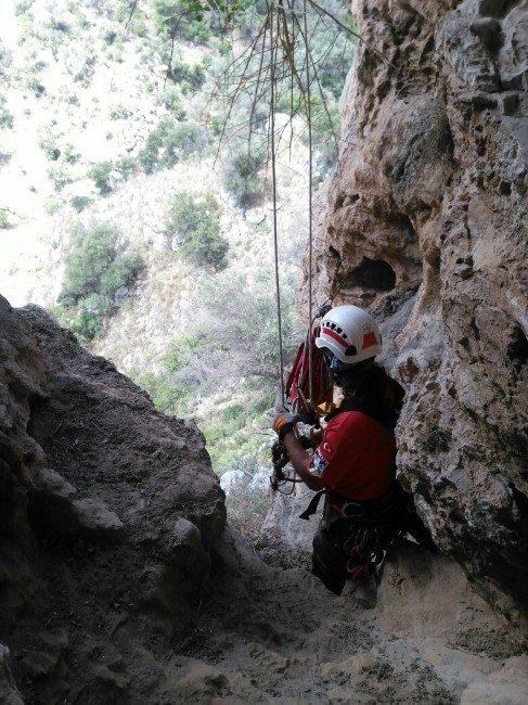 40 Metre Yükseklikteki Mağarada Keçi Kurtarma Operasyonu