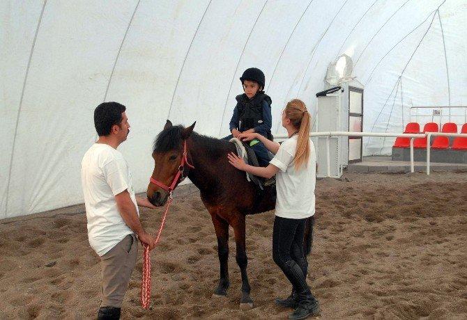 Atlar, Engelli Çocukların Umudu Oldu