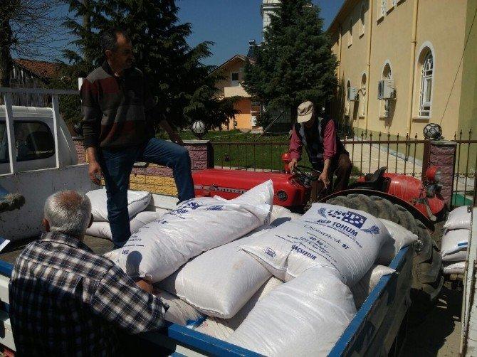 Düzce'deki Çeltik Üreticilerine Tohum Desteği Yapıldı