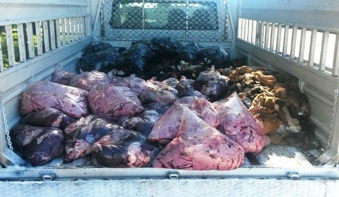 Diyarbakır'da 1 Ton Hayvansal Ürün Ele Geçirildi