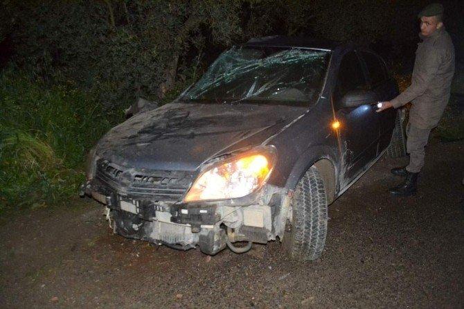 Zeytin Ağacına Çarpan Otomobilin Sürücüsü Öldü