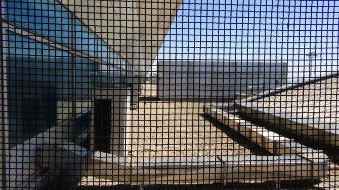 Hintli suçlu havalimanında firar etti
