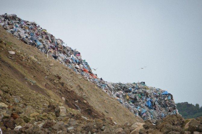 Çevre Kirliliği Karadeniz'i Bitiriyor