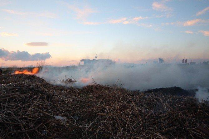 Beyşehir'in Sazlıkları Yandı
