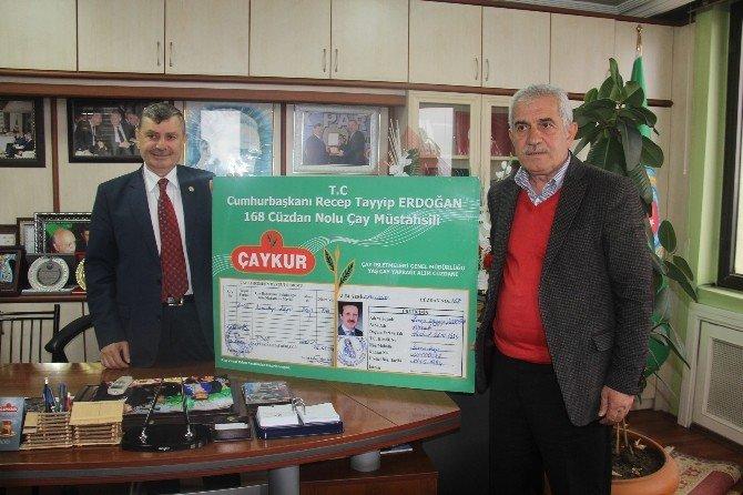 Rize Ziraat Odası Beklenen Çay Taban Fiyatını 2 TL Olarak Açıkladı