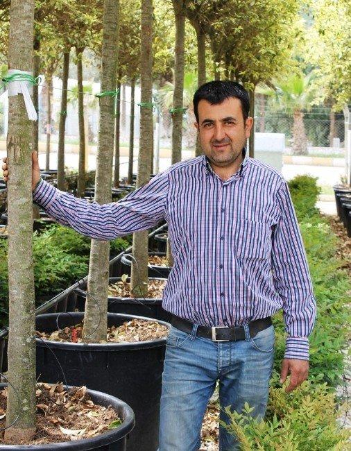Meyve Fidanı İhracatında Türki Cumhuriyetler Başı Çekiyor
