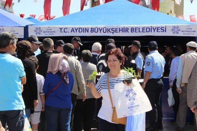 Aydın Büyükşehir Efeler'de 70 Bin Sebze Fidesi Dağıttı