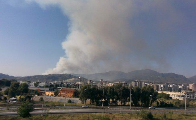Aydın'daki yangın 5 saattir kontrol altına alınamadı